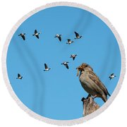 The Lonely Sparrow Round Beach Towel