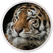The Long Stare Round Beach Towel