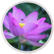 The Lotus And The Bee Round Beach Towel