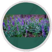 Round Beach Towel featuring the photograph The Lupine Convention by Jennifer Lake