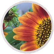 The Magic Sunflower Pollen Round Beach Towel by Dorothy Maier