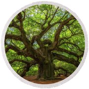 The Magical Angel Oak Tree Panorama  Round Beach Towel by Michael Ver Sprill