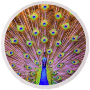 The Majestic Peacock Round Beach Towel
