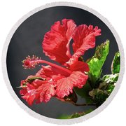 The Mallow Hibiscus Round Beach Towel