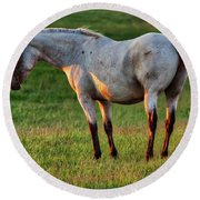 The Mare Round Beach Towel