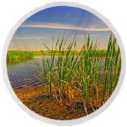 The Marshes Of Brazoria Round Beach Towel