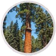 The Mckinley Giant Sequoia Tree Sequoia National Park Round Beach Towel