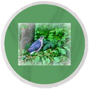 The Merlin Falcon Round Beach Towel