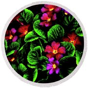 Round Beach Towel featuring the digital art The Moody Primrose by Steve Taylor