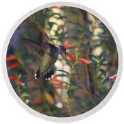 Round Beach Towel featuring the photograph The Morning Whisper by Living Color Photography Lorraine Lynch