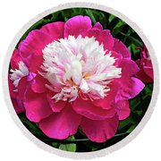 The Most Beautiful Peony Round Beach Towel by Eva Kaufman