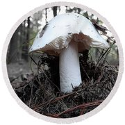 Round Beach Towel featuring the photograph The Mushroom by Melissa Messick