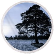 The Old Pine Round Beach Towel