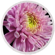 The One And Only Dahlia  Round Beach Towel