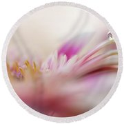 Round Beach Towel featuring the photograph The One. Macro Gerbera by Jenny Rainbow