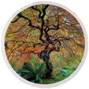 The Other Japanese Maple Tree In Autumn Round Beach Towel