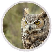 The Owl Round Beach Towel
