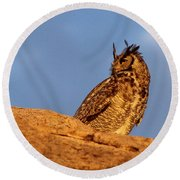 Round Beach Towel featuring the photograph The Owl's Horns In The Breeze by Natalie Ortiz