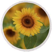 The Patch Of Sunflowers Round Beach Towel