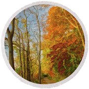 Round Beach Towel featuring the photograph The Path In Fall by Mark Dodd