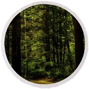 Round Beach Towel featuring the photograph The Path by TL Mair