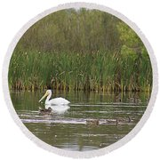 Round Beach Towel featuring the photograph The Pelican And The Ducklings by Alyce Taylor