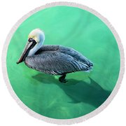 The Pelican And The Shark Round Beach Towel