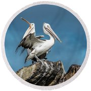 The Pelicans Round Beach Towel by Racheal Christian