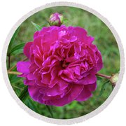 Round Beach Towel featuring the photograph The Peonie by Mark Dodd
