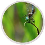 Round Beach Towel featuring the photograph The Performer Dragonfly Art by Reid Callaway