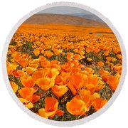 The Poppy Fields - Antelope Valley Round Beach Towel