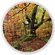 The Protector Round Beach Towel by Jorge Maia