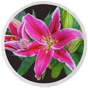 The Pulchritude Of Lady Lily Round Beach Towel