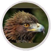 The Punk - Eagle - Bird Of Prey Round Beach Towel
