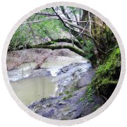 The Quiet Places Round Beach Towel by Donna Blackhall