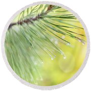 Round Beach Towel featuring the photograph The Rain The Park And Other Things by John Poon