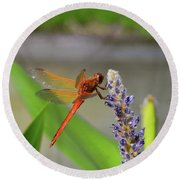 The Red Dragonfly Nbr.2 Round Beach Towel