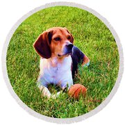 The Reserved Beagle Round Beach Towel