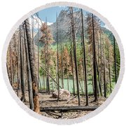 Round Beach Towel featuring the photograph The Revealed View by Margaret Pitcher