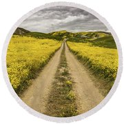 The Road Less Pollenated Round Beach Towel by Peter Tellone