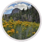 The Road To Mt. Charleston Natural Area Round Beach Towel