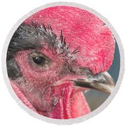 The Rooster Round Beach Towel by David Stasiak