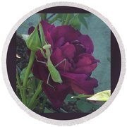 The Rose And Mantis Round Beach Towel