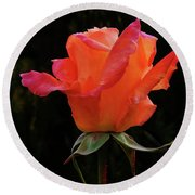 The Rose Round Beach Towel by Mark Blauhoefer