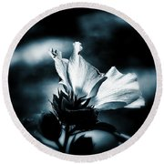 The Rose Of Sharon Round Beach Towel by Allen Beilschmidt