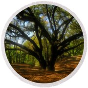 The Sacred Oak Round Beach Towel