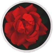 The Scarlet Rose Round Beach Towel