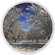 Round Beach Towel featuring the photograph The Season Of Us by Laurie Search
