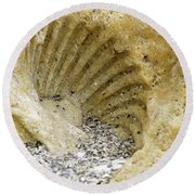 The Shell Fossil Round Beach Towel