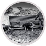 Round Beach Towel featuring the photograph The Shepherd by Keith Elliott